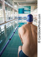 vista traseira, de, shirtless, nadador, por, piscina, ao ar livre, centro