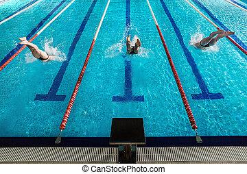 vista traseira, de, três, macho, nadadores, mergulhar, em, um, piscina