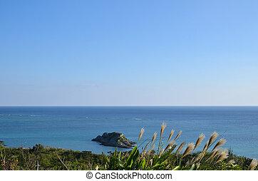 vista, tropicais, costa