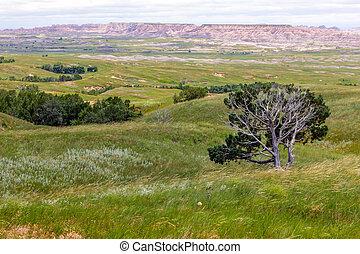 Vistas of Badlands National Park, USA - Grasslands Meet the ...