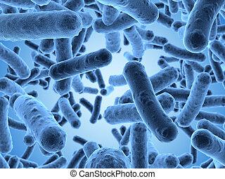 vistos, exploración, mic, bacterias, debajo