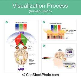 Visualization Process human vision. - Visualization Process...