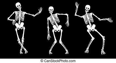 vit, full, skelett, på, black., sätta, #2., vektor