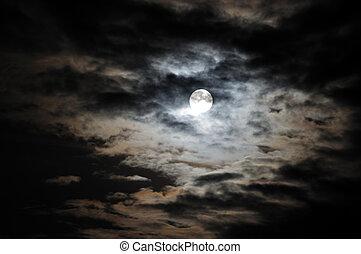 vit, fyllda, skyn, måne