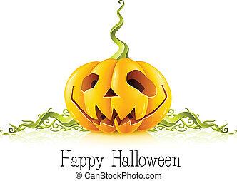 vit, halloween, bakgrund, pumpa