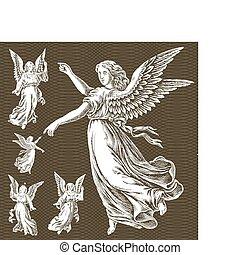 vit, vektor, änglar