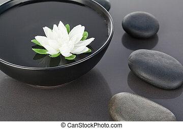 vita blomma, flytande, in, a, svart, bunke, omgiven, av, svart, kiselstenar