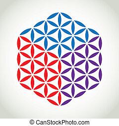 vita, fiore, colorare, simbolo, -, illustrazione, cubo