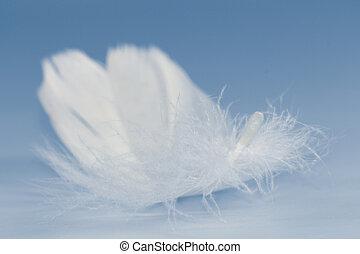 vita fjädra
