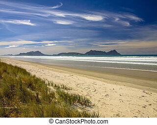 vita sandpappra, strand, med, blåttsky, in, nya zeeland