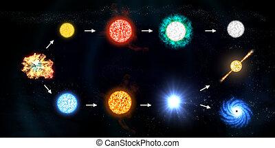 vita, stella, ciclo
