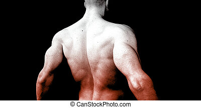 Vitality and Health with Fit Male Torso Concept