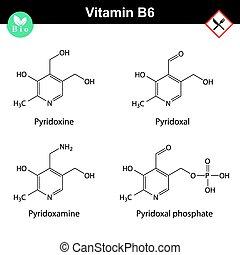 vitamine, chemisch, vormen, formules, b6