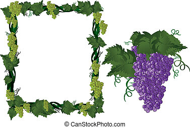viti, cornice, uva