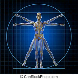 Vitruvian human skeleton man and body with as a frontal Leonardo Da Vinci like anatomy pose for health care and medicine icon on a black background.