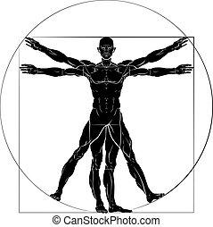 Vitruvian Man Da Vinci Style Figure
