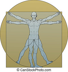 Vitruvian man - Illustration based on Leonardo da Vinci's...