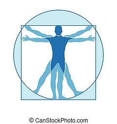 vitruvian, vecteur, corps humain, icône, homme