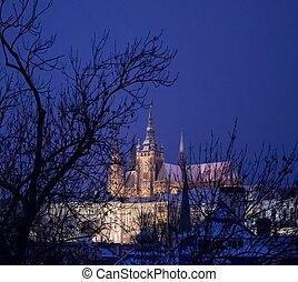 vitus, kathedraal, straat., nacht