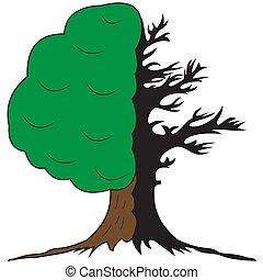vivant, arbre, mort