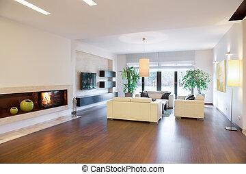 vivant, spacieux, salle, confortable