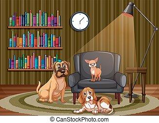 vivendo, cachorros, sala