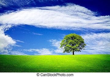 vivendo, em, um, verde, natureza