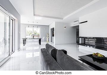 vivendo, sofá, espaçoso, sala, cinzento