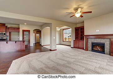 vivente, carpet., bello, stanza, unfurnished