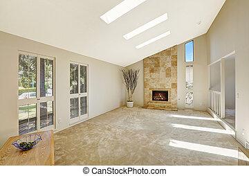 vivente, soffitto, stanza, beautitful, skylights., vaulted, vuoto