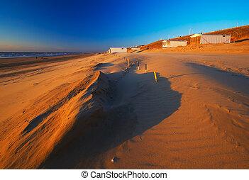 vivente, spiaggia