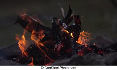 Vivid burning bonfire close up at evening. Slow motion, 180fps. Sparks flying from the fire. Tongue of flame