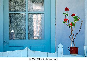 house front door - vivid house front door with geranium in...