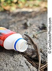 Viviparous lizard and plastic bottle - environment - concept