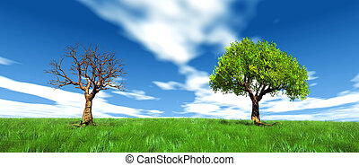 vivo, árbol, muerto