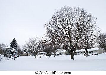 vizinhança, neve