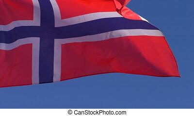 vlag, van, noorwegen, dichtbegroeid boven