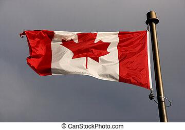 vlag, wind, canadees