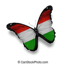 vlag, witte , vrijstaand, hongaars, vlinder