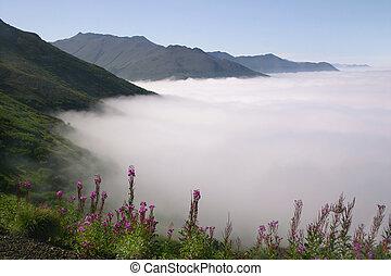 vlakke bovenkant, wolken, boven, berg