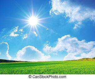 vlakte, en, diep, blauwe hemel