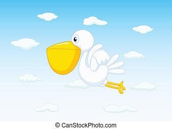 vlieg, pelicans