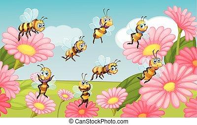 vliegen, bloemtuin, bijtjes