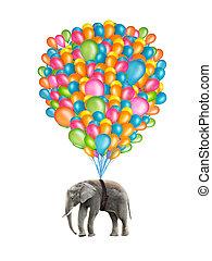 vliegen, elefant