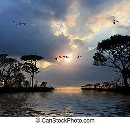 vliegende vogels, in, de, hemel, meren, bomen, ondergaande zon