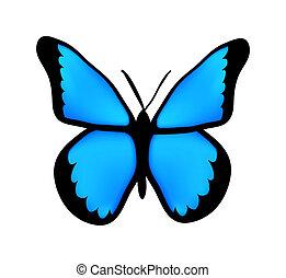 vlinder, blauwe