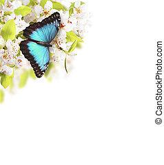 vlinder, boompje, appel, bloesems