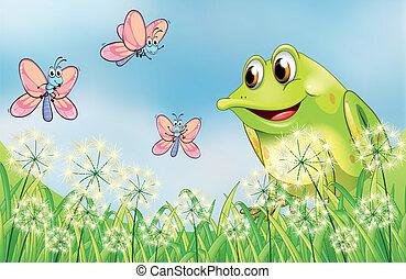vlinder, drie, kikker