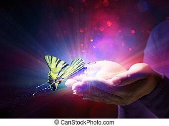 vlinder, fairytale, -, handen