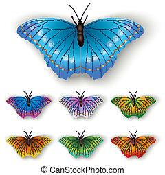 vlinder kleuren, witte , vrijstaand